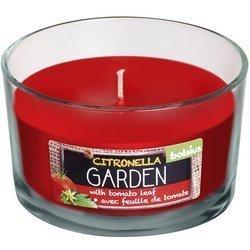 Bolsius świeca zapachowa antykomarowa w szkle czerwona 62/106 mm - Citronella Pomidor